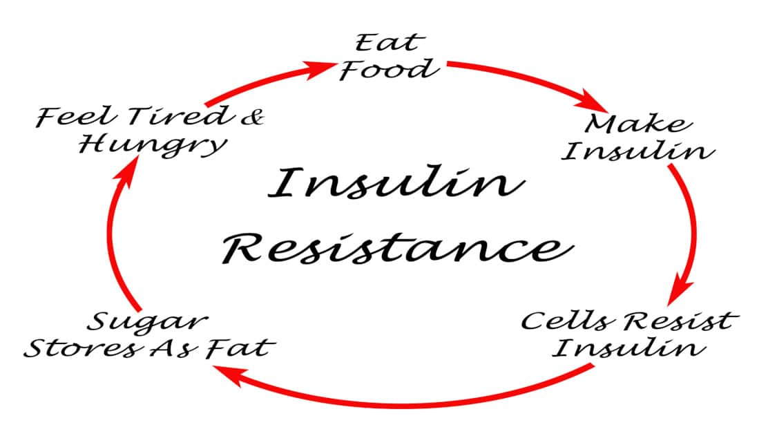 Is Insulin Resistance Stalling Your Weight Loss?