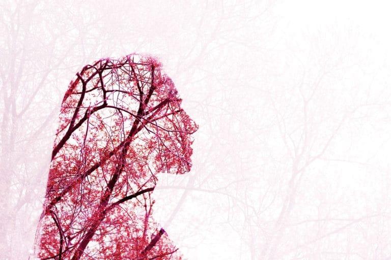Manage Stress & the Parasympathetic Nervous System